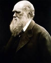 دانلود تحقیق ارنست مایر و چارز داروین